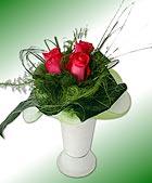 Crvene ruže, 3 kom